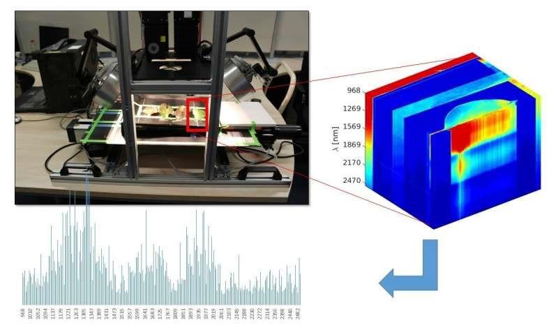 Sensors for early disease symptom detection in European fruit cultivation