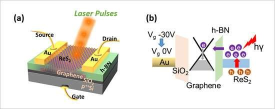 Development of a Multivalued Optical Memory Composed of Two-Dimensional Materials
