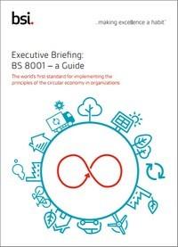 Executive Briefing: BS 8001 – a Guide   BSI