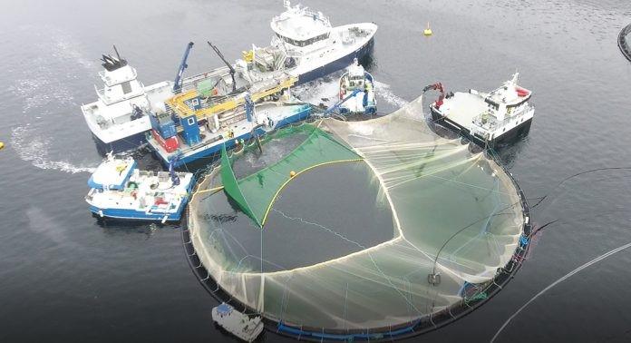 sustainable aquaculture